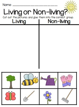 Flower and Gardening Dramatic Play and Worksheets Set