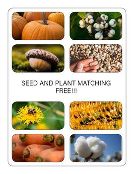 Flower and Seed Matching - Paid Version