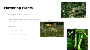 Flowering & Non Flowering Plants