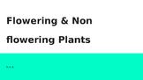 Flowering & Non Flowering Plants