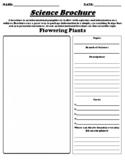 """Flowering Plants """"Informational Brochure"""" UDL WebQuest & Worksheet"""