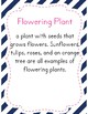 Flowering and Non-Flowering Plants