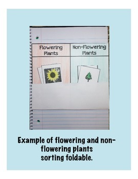 Flowering and Non-Flowering Plants Interactive Sorting Foldable