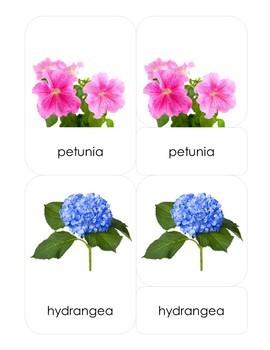 Flowers 3-Part Montessori-Inspired Card Set