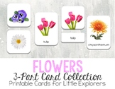 Flowers 3-Part Montessori-Inspired Card Set