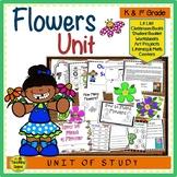 Flowers Unit: Activities & Centers