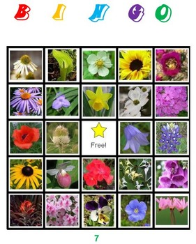 Flowers Bingo Volume 1