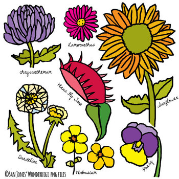 Flowers Clip Art - Hand Drawn Flowers - BW line Art included