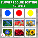 Flower Color Sorting Activity