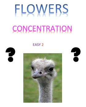 Flowers Concentration Easy  Volume 2