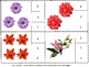Flowers Count & Clip Task Cards 1-20 Math Centers Morning Work