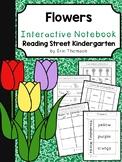 Flowers Interactive Notebook ~ Reading Street Kindergarten