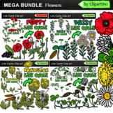 Summer Flowers Life Cycle Clip Art BUNDLE
