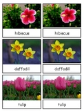 Flowers Montessori 3-part cards--Safari Flowers Toob
