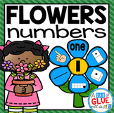 Flowers Number Match-Up