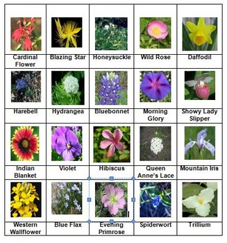 Flowers Rummy Level 2