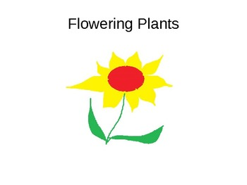 Parts of the Flower..Science, Differentiated...Simple Lang