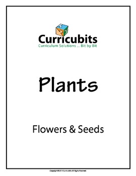 Flowers & Seeds | Theme: Plants | Scripted Afterschool Activity