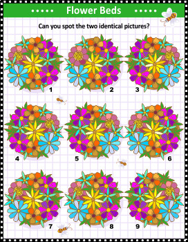 Flowers Spot the Identicals Visual Puzzle, Commercial Use Allowed