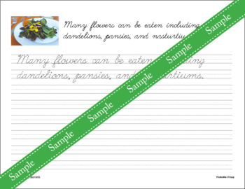 Flowers and Plants Unit - Copywork - Cursive - Handwriting