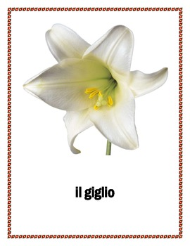 Fiori e Alberi (Flowers and Trees in Italian) Posters