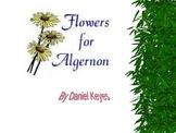 Flowers for Algernon Charlie PowerPoint