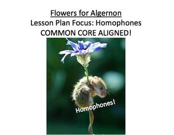 Flowers for Algernon Lesson Plan, Handouts, etc: HOMOPHONES