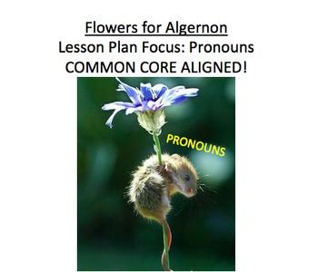 Flowers for Algernon Lesson Plan, Handouts, etc: Pronouns, nouns...