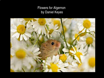 flowers for algernon test teaching resources teachers pay teachers flowers for algernon unit bundle flowers for algernon unit bundle