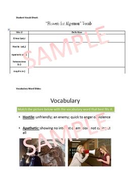 Flowers for Algernon Vocabulary Materials: Vocab List, Slides, Drills, Quiz