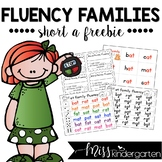 Free Reading Fluency Practice -at Word Family