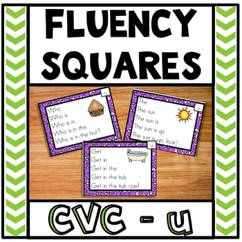 Fluency Squares Short U CVC words