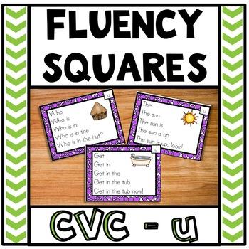 Fluency Squares Short U CVC words
