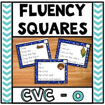 Fluency Squares Short o CVC words