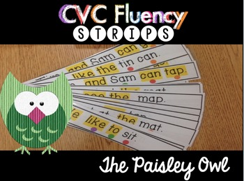 Fluency Strips (CVC words with pre-primer and primer sight words)
