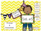 Fluency Strips (Set #5)- focus on sight words, blends, long vowels & .?!