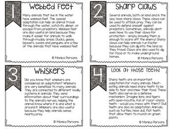 Fluency Task Cards {Animal Facts}