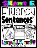 Fluency With CVCE {Silent E}