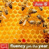 Fluency for the Year - June Packet