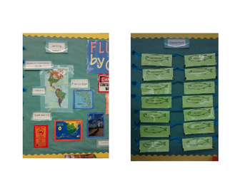 Flush Bulletin Board