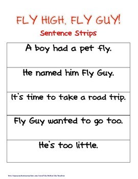 Fly High Fly Guy Fluency Fun with Exit Ticket