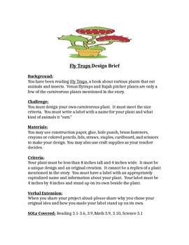 Fly Traps STEM Children's Engineering Design Brief