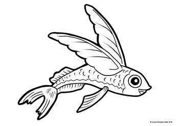 Flying Fish Colouring Page By Green Monkey Tales Tpt