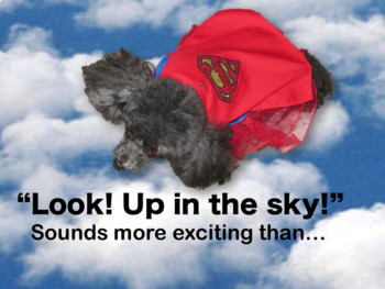 Flying with Your In-Cabin Dog on the Airlines! A How-To Guide with Photos.
