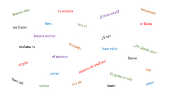 Flyswatter Game - Matamoscas - Introductory Spanish 1