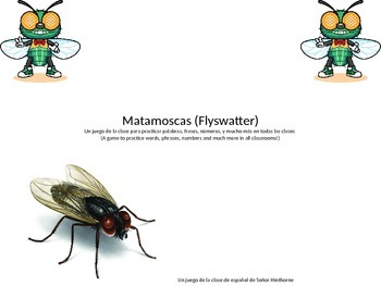 Flyswatter (Matamoscas) Vocabulary Practice Game- EASY TO USE AND EDIT!