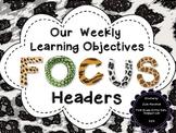 Focus Wall Headers with Animal Print theme