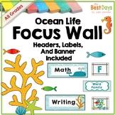 Focus Wall Headers: Ocean Life