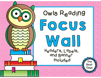 Focus Wall:  Owls Reading