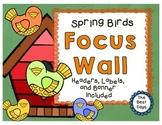 Focus Wall: Spring Birds / Bird Houses